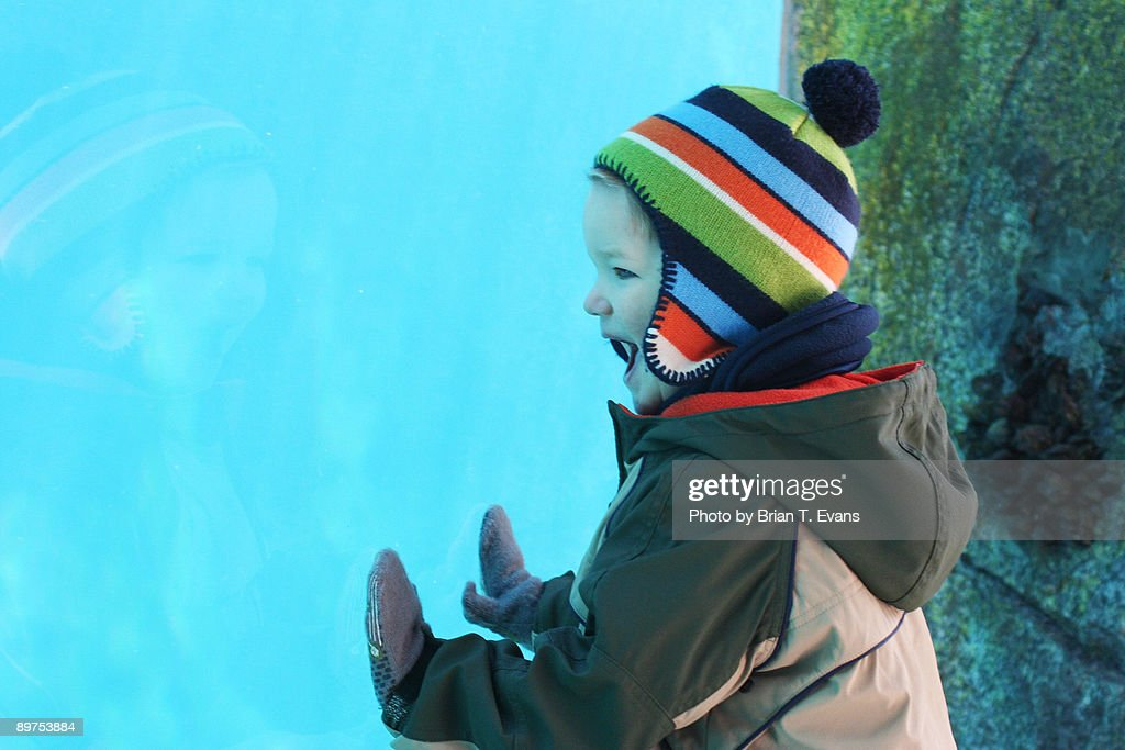 Happy Boy at the Aquarium : Stock Photo