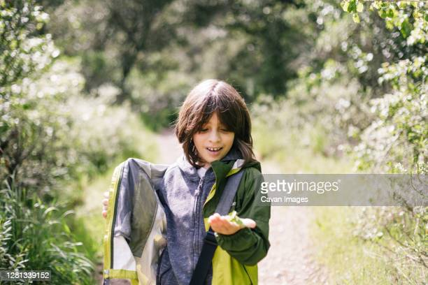 happy boy showing an insect in natural park - petaluma stock pictures, royalty-free photos & images