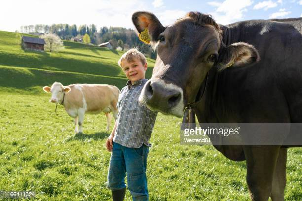 Happy boy with cow on pasture