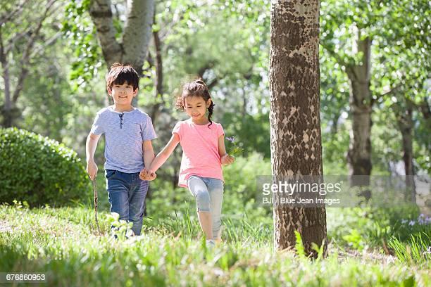 happy children holding hands walking in woods - 姉妹 ストックフォトと画像