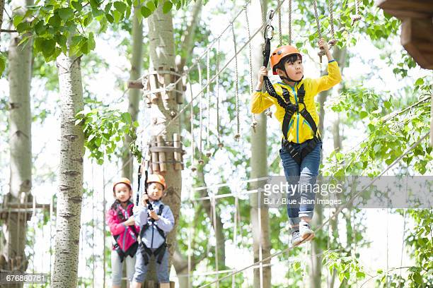 Happy children playing in tree top adventure park