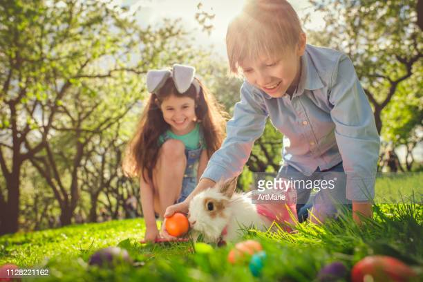 happy children playing with bunny on easter egg hunt - easter egg hunt stock pictures, royalty-free photos & images