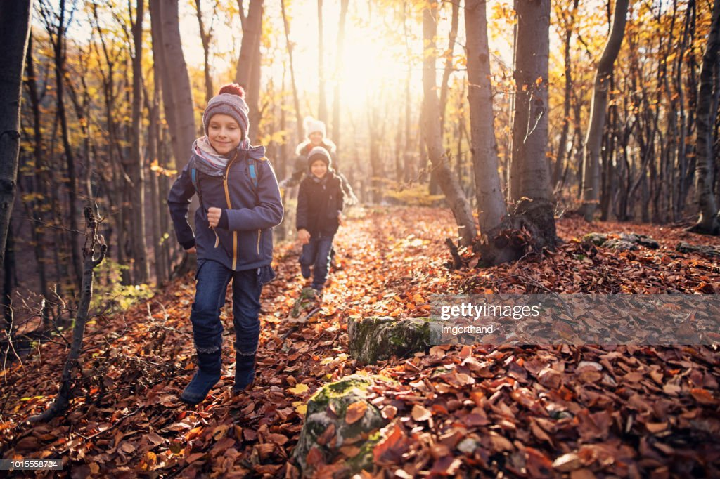 Happy children running in autumn forest : Stock Photo