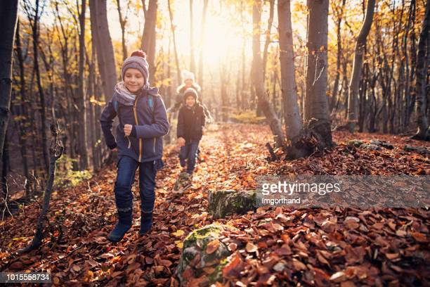 happy children running in autumn forest - woodland stock pictures, royalty-free photos & images