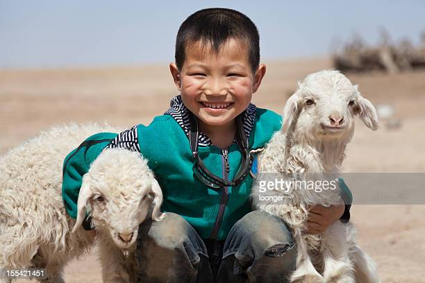 Happy Chinese boy with his lambs outdoor