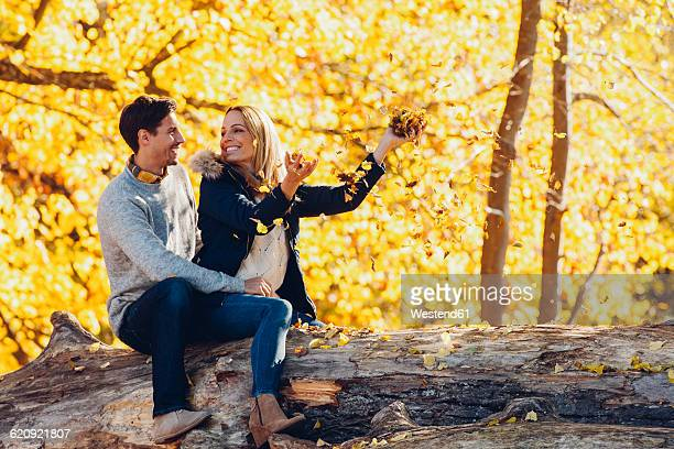 happy couple having fun in autumn in a forest sitting on a trunk - cougar woman fotografías e imágenes de stock