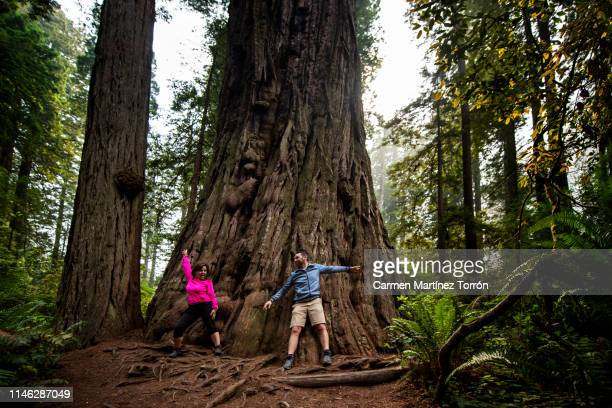 Happy couple in Redwoods National Park, USA.