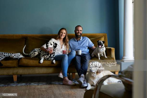 happy couple sitting in sofa with their 3 dogs - esposa imagens e fotografias de stock