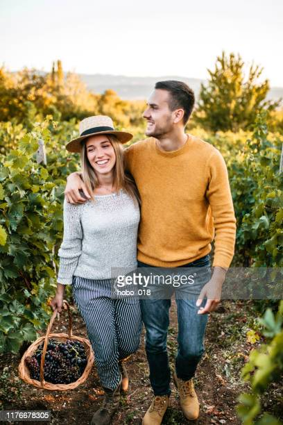 happy couple walking through vineyard - grape harvest stock pictures, royalty-free photos & images