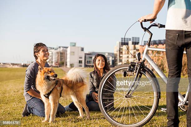 happy couple with looking at friend holding bicycle at park in city - grupo mediano de animales - fotografias e filmes do acervo