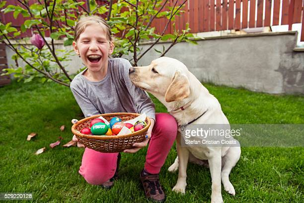 happy easter - dog easter stock pictures, royalty-free photos & images