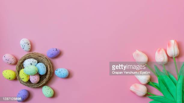 happy easter, top view of easter eggs and tulip flower on pink color backgroud - easter sunday stock pictures, royalty-free photos & images