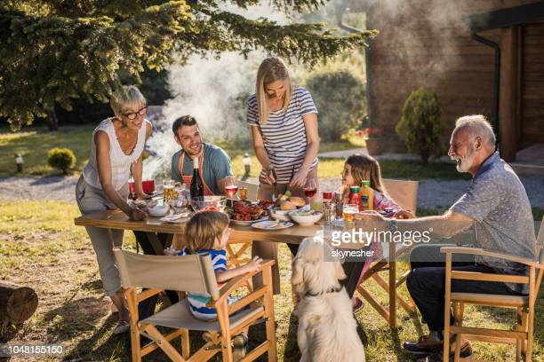happy extended family talking while having their lunch in the front yard. - dog eats out girl stock photos and pictures