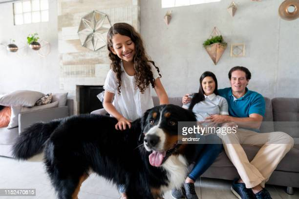 happy family at home with their dog - family at home stock pictures, royalty-free photos & images
