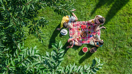 Happy family having picnic in park, parents with kids sitting on grass and eating healthy meals outdoors, aerial drone view from above 1032420308