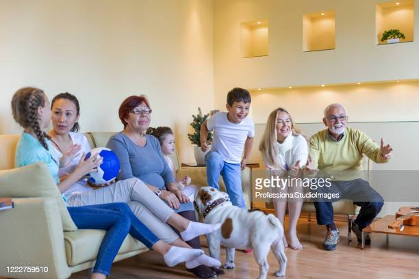 a happy family is watching a football game at home. - chinese bulldog stock pictures, royalty-free photos & images
