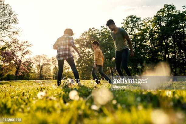 happy family playing in nature late afternoon sunlight - natural parkland stock pictures, royalty-free photos & images