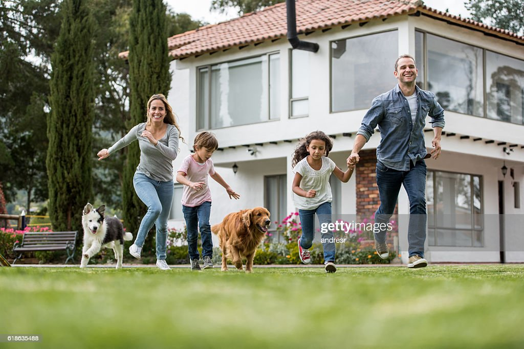 Happy family playing with their dogs : Stock Photo