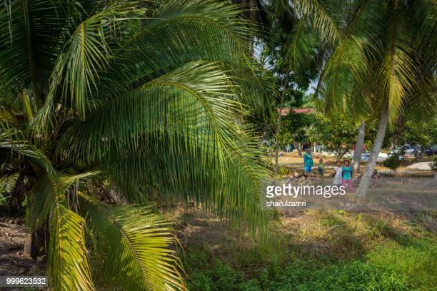 Happy family pose for camera during Eid-Fitri under coconut trees at Sabak Bernam, Malaysia