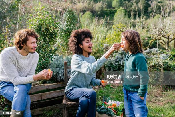 happy family sitting in garden, taking a break, eating sandwiches - natural condition stock pictures, royalty-free photos & images