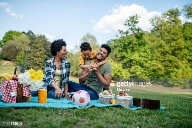 ピクニックに春の日を過ごす幸せな家族 - ピクニック ストックフォトと画像