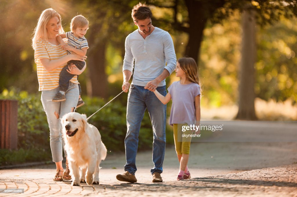 Happy family talking while walking with a dog in spring day. : Stock Photo