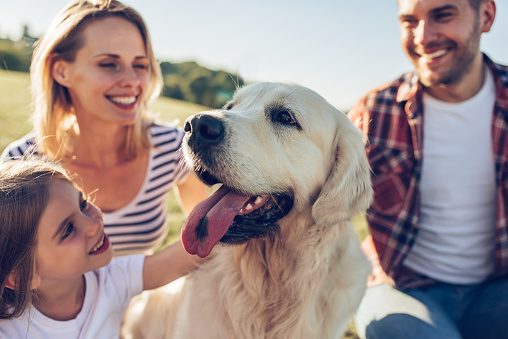 Happy family with dog 942596618