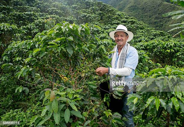 Happy farmer harvesting Colombian coffee