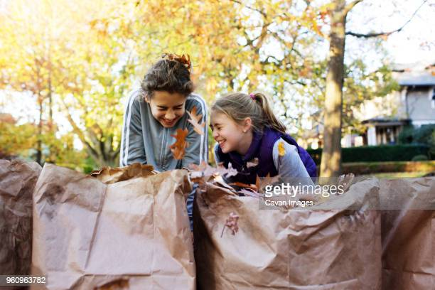 Happy friends laughing while collecting autumn leaves