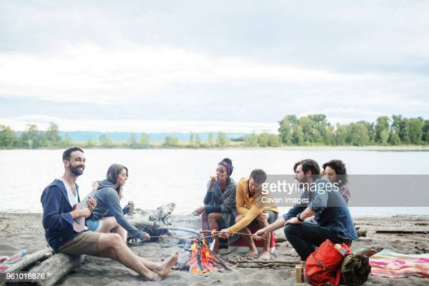 happy friends roasting sausages on campfire at riverbank against sky - snag tree stock pictures, royalty-free photos & images