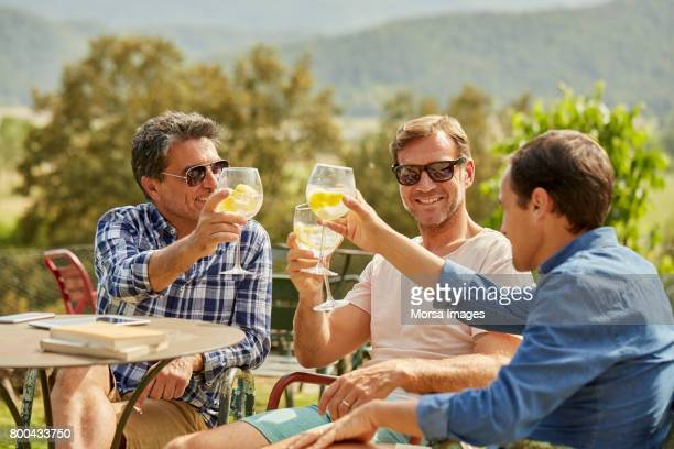Amigos felices del tostado bebidas a la mesa en el patio