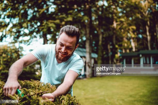 happy gardener working in his natural habitat - hedge stock pictures, royalty-free photos & images