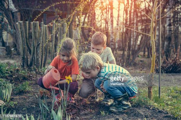 happy girl and boys playing with water in summer - children only stock pictures, royalty-free photos & images