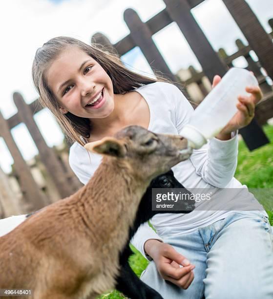 Happy girl feeding a goat
