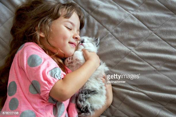 happy girl hugging her persian kitten. - persian girl stock photos and pictures