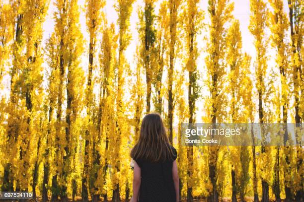 Happy girl standing in front of a wall of autumn yellow poplar trees