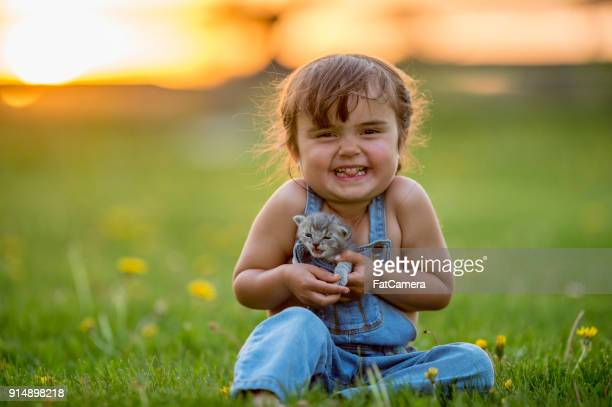 happy girl with kitten - domestic animals stock pictures, royalty-free photos & images
