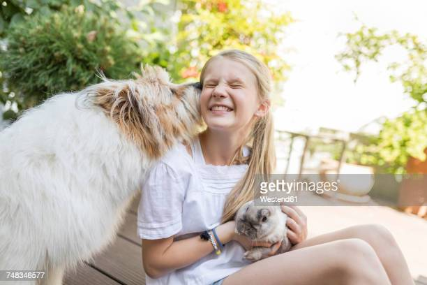 happy girl with rabbit and dog outdoors - girls licking girls stock pictures, royalty-free photos & images