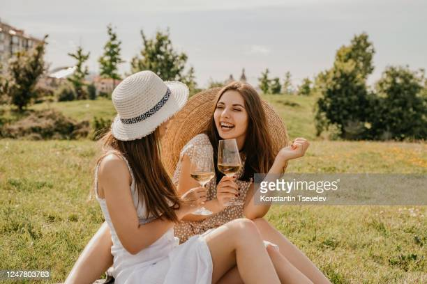 happy girlfriends on a picnic - wine stock pictures, royalty-free photos & images