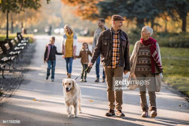 happy grandparents talking while walking their dog at the park. - autumn dog stock pictures, royalty-free photos & images