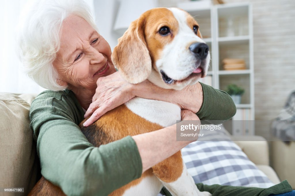 Happy granny loving her dog : Stock Photo