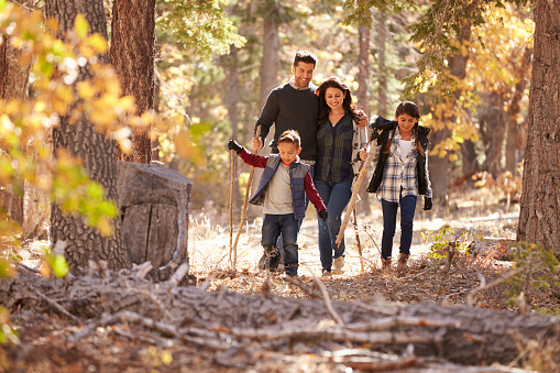 Happy Hispanic family with two children walking in a forest 540095870