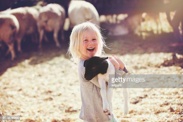 happy holding lamb smiling girl sideways - ovino foto e immagini stock