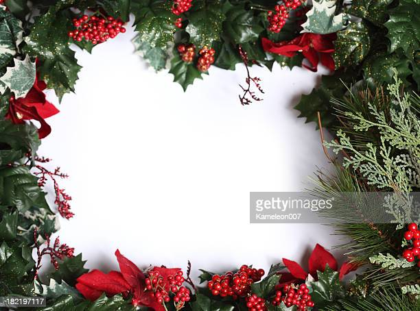 feliz navidad - flor de pascua fotografías e imágenes de stock