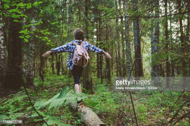 happy kid girl exploring summer forest, traveling on vacation teaching kids to love nature - 雰囲気 ストックフォトと画像