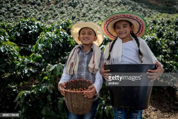 happy kids verzamelen koffiebonen op een boerderij - colombia land stockfoto's en -beelden