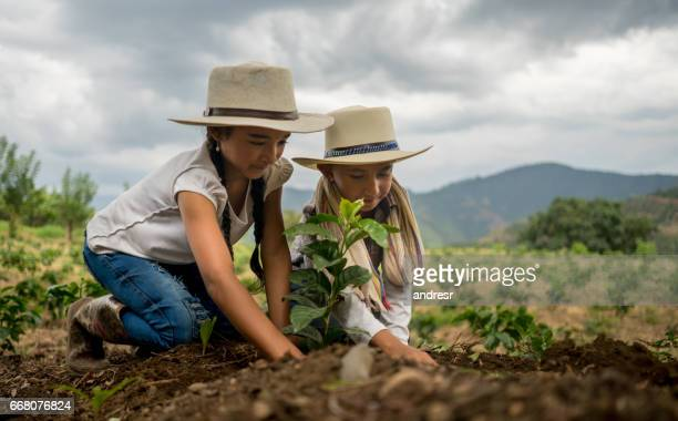Happy kids planting trees at a coffee farm