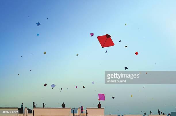 Happy Kite Festival-2014