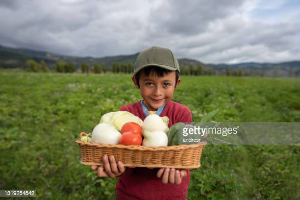 happy latin american boy carrying a basket of vegetables at his farm - south america stock pictures, royalty-free photos & images
