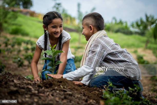 Happy Latin American children planting a tree at the farm